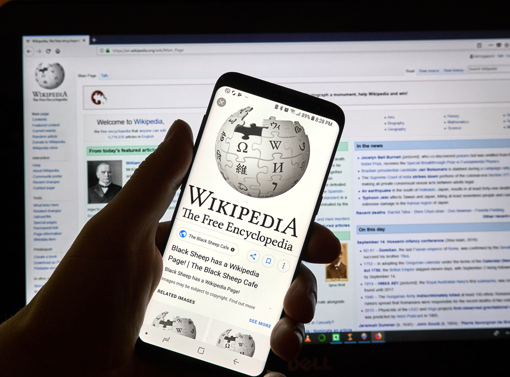 Examples OF Wikipedia